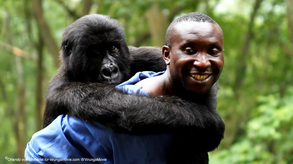 VIRUNGA copy