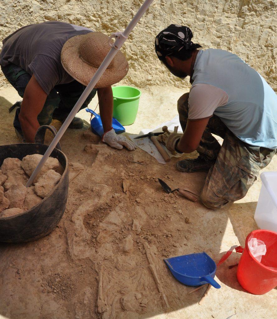 Ανασκαφές στο Μυκηναϊκό νεκροταφείο των Αηδονίων