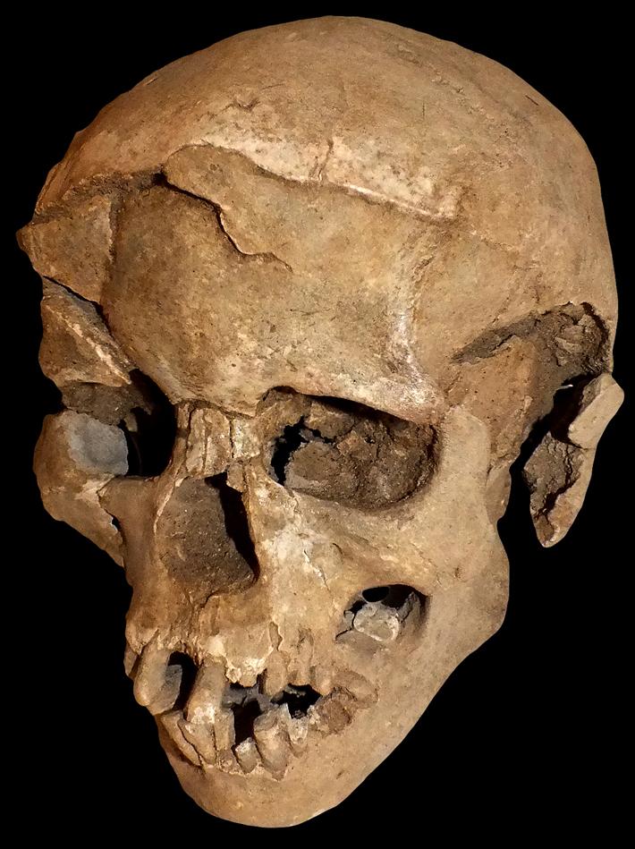 Άταφοι νεκροί 10.000 ετών Στη λίμνη Τουρκάνα της Κένυας αποκαλύφθηκαν κατάλοιπα 27 ατόμων που σκοτώθηκαν 10.000 χρόνια πριν. Οι νεκροί του Ναταρούκ ήταν άταφοι