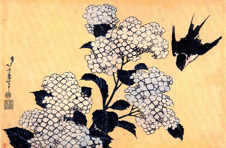 Katsushika Hokusai: Hydrangea and Swallow