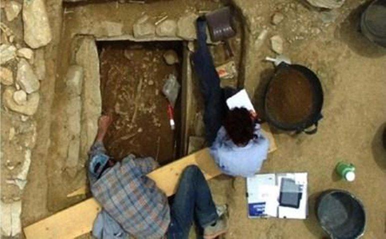 Τάφος πολεμιστή των πρώιμων μυκηναϊκών χρόνων στο Μαραθώνα