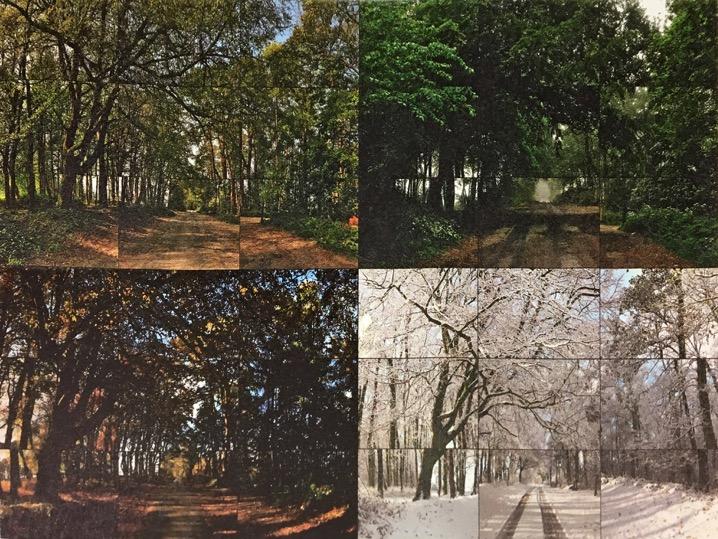 Προτελευταία αίθουσα της έκθεσης «Ντέιβιντ Χόκνεϋ» στην Τέιτ Μπρίταν, Λονδίνο. Οι Τέσσερις Εποχές: Άνοιξη, Καλοκαίρι, Φθινόπωρο, Χειμώνας – Γούντγκεϊτ Γουντς, 2010-2011. 36 ψηφιακά βίντεο συγχρονισμένα σε οθόνες 36 55-ιντσών που συμπεριλαμβάνουν ένα ενιαίο έργο τέχνης (4:21).