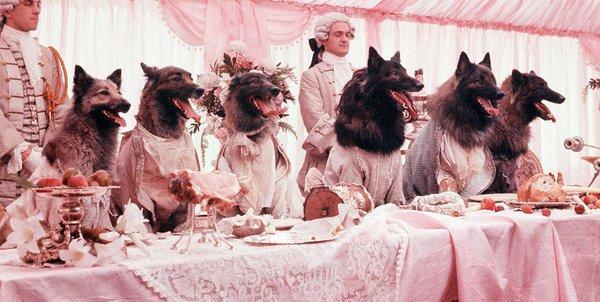 Η Παρέα των Λύκων του Νιλ Τζόρνταν (1984)
