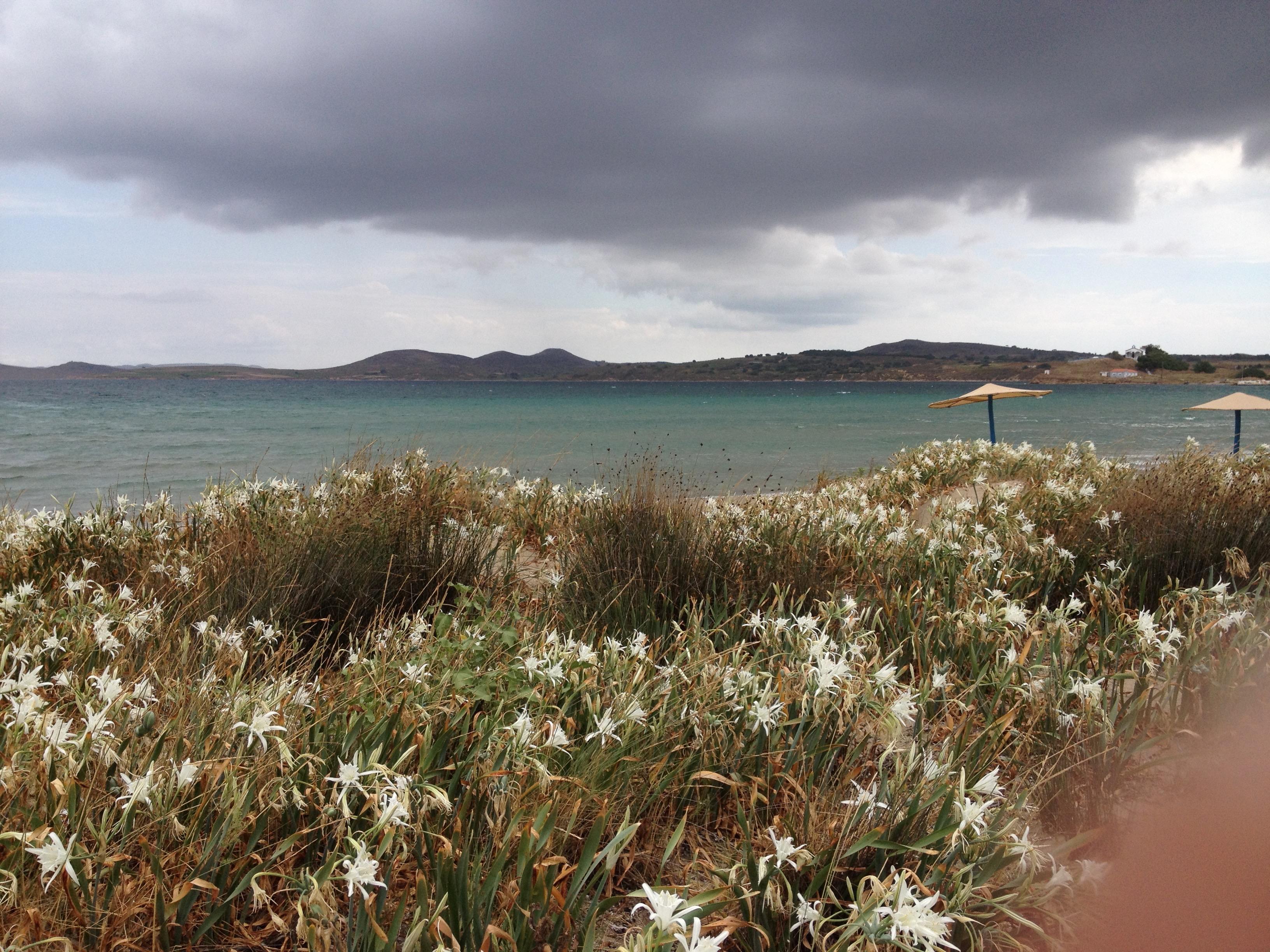 Η παραλία Κέρος
