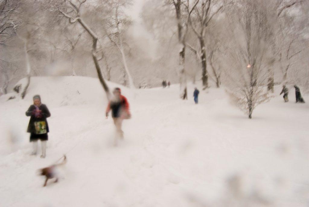 «of snow»