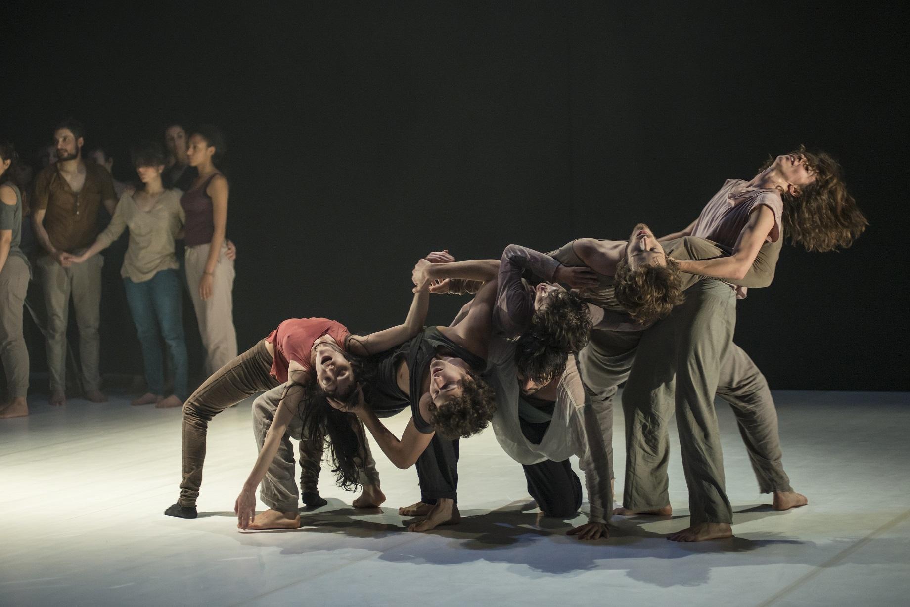 Η Compañía Sharon Fridman στο 24ο Διεθνές Φεστιβάλ Χορού Καλαμάτας | Free Fall | ©Andrea Macchia