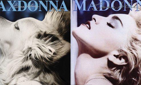 Ο Φλουρέ παρέλειψε να βάλει στον Μαξ μόνο το κόκκινο κραγιόν που φορούσε η Μαντόνα στο εξώφυλλο του «True Blue»