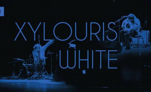 xylouris white