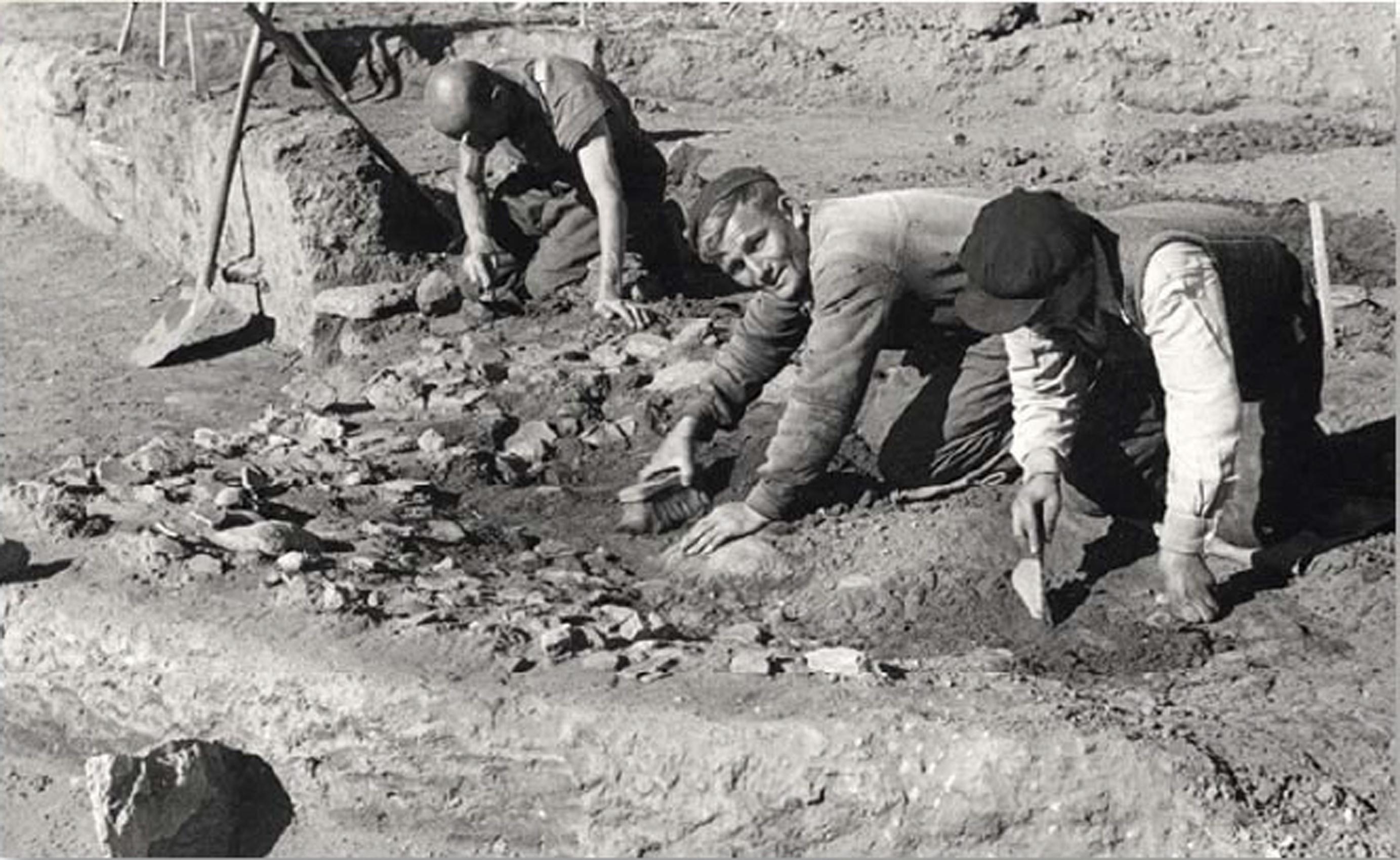 Άποψη της ανασκαφής και επιλεγμένων ευρημάτων της (Φωτογραφικό Αρχείο Εθνικού Αρχαιολογικού Μουσείου)