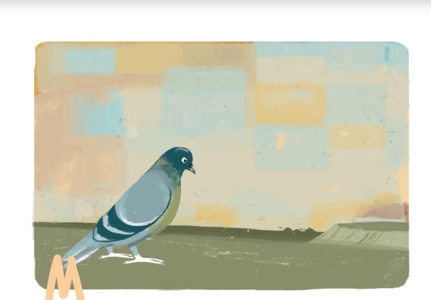 Εικονογράφηση: Λίλα Καλογερή | Από το βιβλίο «Σερ Αμί, το περιστέρι του πολέμου»