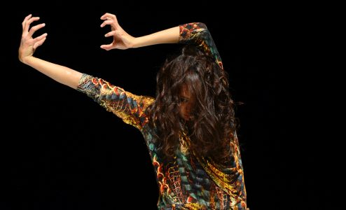 25ο Διεθνές Φεστιβάλ Χορού Καλαμάτας